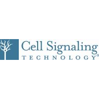Cell Signaling Technology Europe B.V.